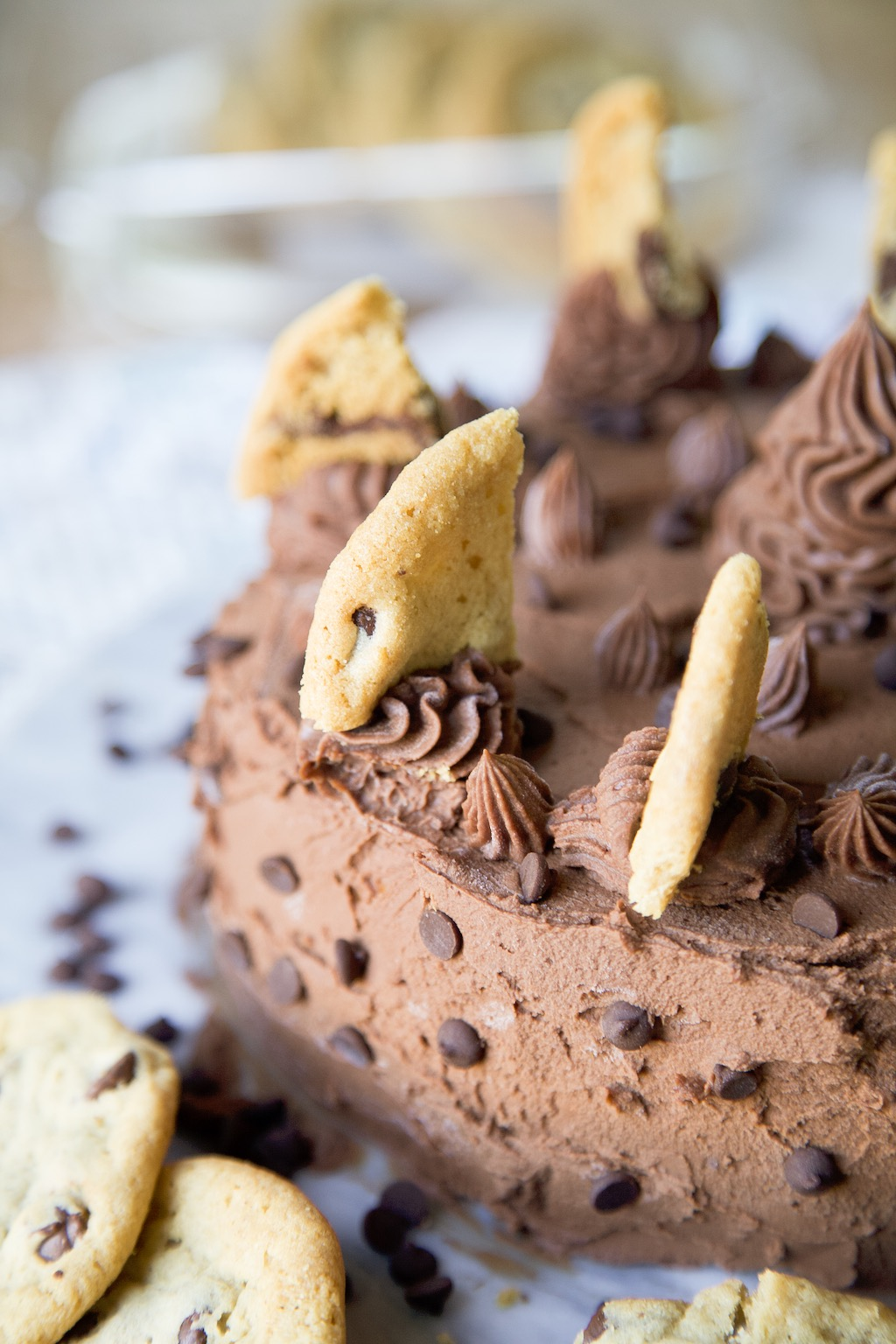 Chocolate Chip Ice Cream Cake - MSST